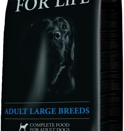 Fitmin Dog for Life Dog Adult Large breed 15 kg